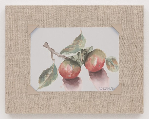 Watercolor of Persimmons