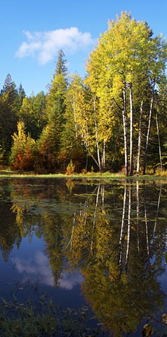 Autumn is mirrored in a pond below Crane Mountain near Ferndale, Montana.