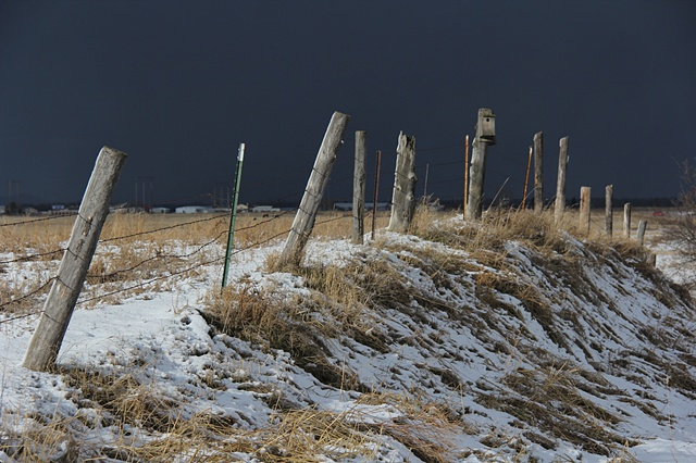 An old fence row along Somers Stage Road near Flathead Lake in northwest Montana.