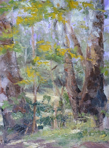 plein air palette knife painting of sycamores in Sharon Woods, Cincinnati