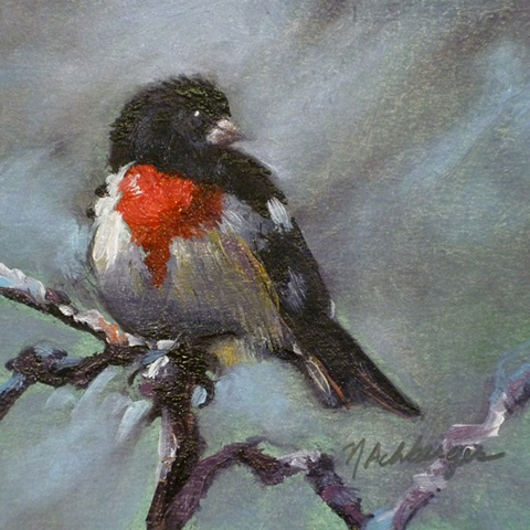 Miniature oil painting of Rose-breasted Grosbeak bird