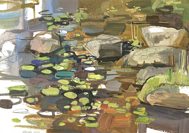 Lily pads and rocks