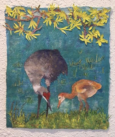 """Sandhill Crane Hen and Chick"""