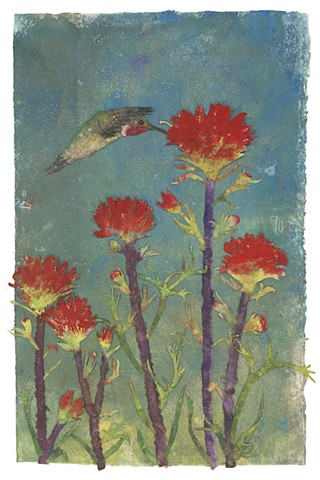 """Hummingbird and Indian Paintbrush"""