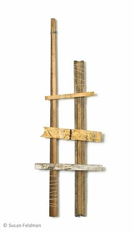 Ladder #45
