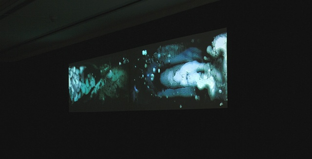 liamorty [Installation View 2]