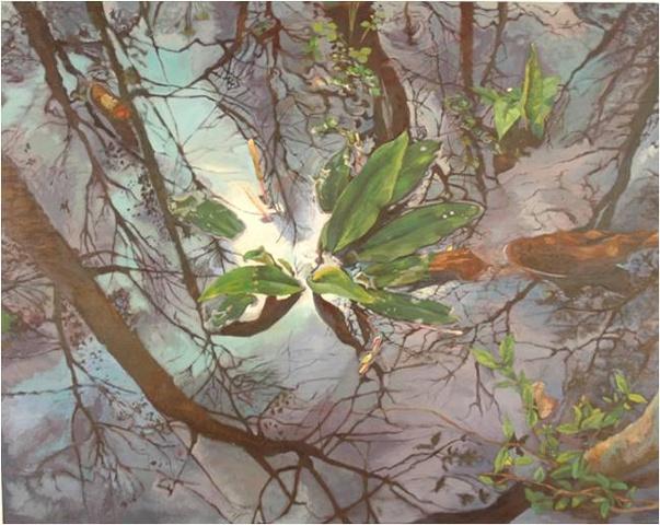 Reflections at Ebenezer Swamp