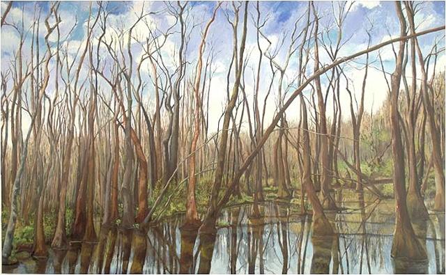 Panorama At Ebenezer Swamp