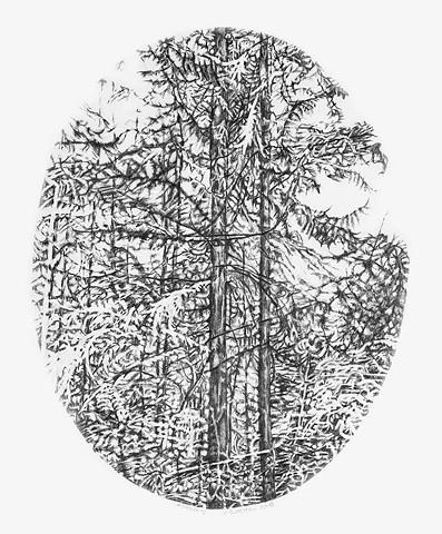 Forest Cameo V