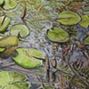 Shallow Pond (Detail)