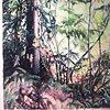 Backlit Forest in progress 2