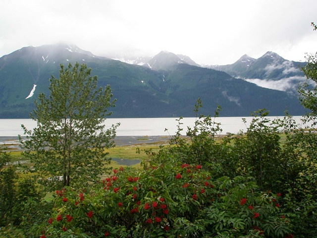 Chilkat River valley. Haines, Alaska.