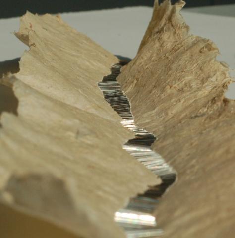 Pin Paper 1 (det)