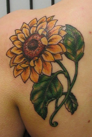 Tattoos, tattooed, tattoo, oshkosh, oshkosh wi, oshkosh tattoo artist, custom tattoo shop, custom tattoos,  custom designs, downtown oshkosh, downtown, oshvegas, uwoshkosh, uwo, tattoo artists, tattoo art, custom tattoo studio, tattoo studio, alternative,