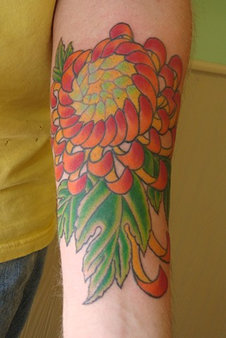 Chrysanthemum, Chrysanthemum flower, Chrysanthemum tattoo, Chrysanthemum flower tattoo, tattoo, tattoos, colorful tattoo, color tattoo, Steven Anderson, Oshkosh, 920 tattoo co, fox valley, flower