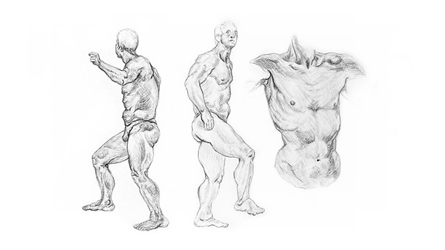 Male Anatomy Session