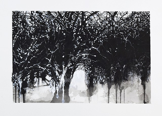 Art Trees Wood Ink Drawing by Ian Crawley