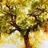 Plantation Tree 2