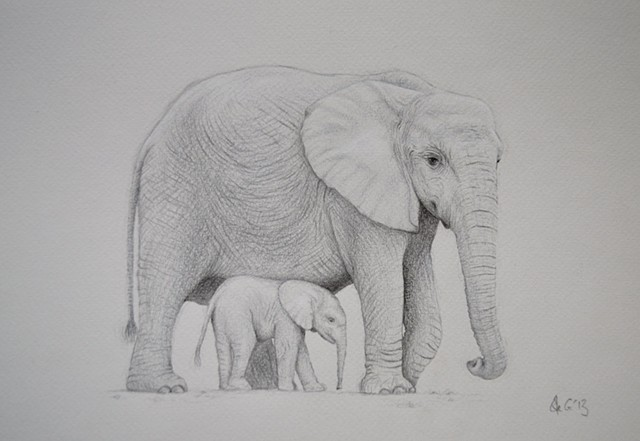 'Mother Elephant and baby'