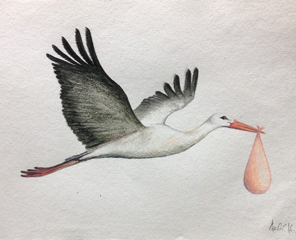 stork drawing by Ele Grafton