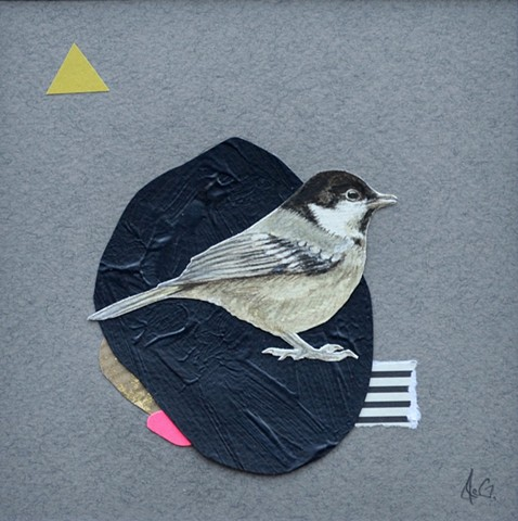 Collage piece featuring an original drawing of a Coal Tit
