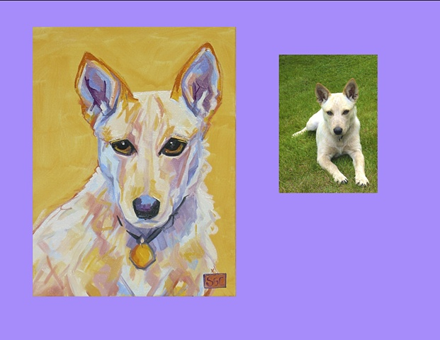 """Pearlene"" is a Red Heeler, this is her Color Dog portrait"