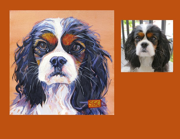 Color Dog portrait, pet portrait, dog portrait, custom oil dog portrait, portrait of a Cavalier King Charles Spaniel