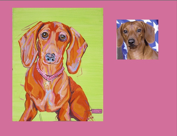 Julie is a Dachshund  This is her Color Dog portrait
