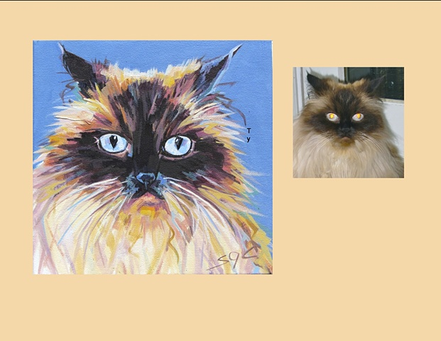 Color Cat portrait, pet portrait, custom cat portrait, pet portrait in oils