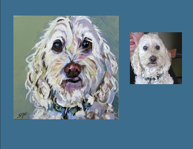 Color Dog portrait, pet portrait, dog portrait, custom oil dog portrait, portrait of a Cockerpoo