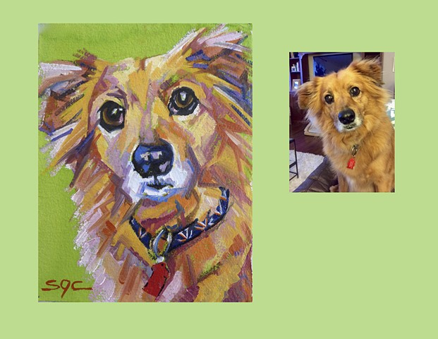 Color Dog portrait, pet portrait, dog portrait, custom oil dog portrait of a mixed breed, painting of a cute mutt, mixed breed, Color Dog portrait by Sarah Gayle Carter