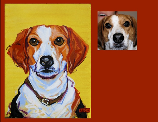 """Bailey"" is a Beagle, this is his Color Dog portrait"