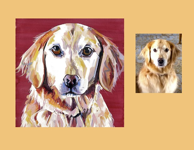 Color Dog portrait, portrait of a Golden Retriever, custom dog portrait, pet portrait, Color Dog portrait by Sarah Gayle Carter