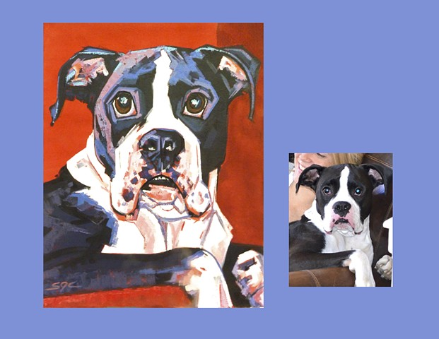 Color Dog portrait, pet portrait, dog portrait, custom oil dog portrait of a Boxer, painting of a Boxer, Color Dog portrait by Sarah Gayle Carter