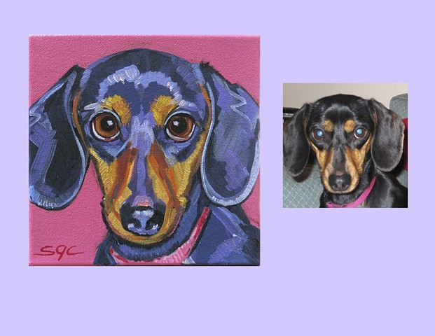 Color Dog portrait, pet portrait, dog portrait, custom oil dog portrait of a Dachshund, portrait of a Miniature Dachshund, Color Dog portrait by Sarah Gayle Carter