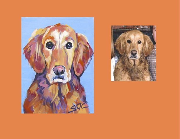 Color Dog portrait, pet portrait, dog portrait, custom oil dog portrait, portrait of a retiever, portrait of a Golden Retriever, Color Dog portrait by Sarah Gayle Carter