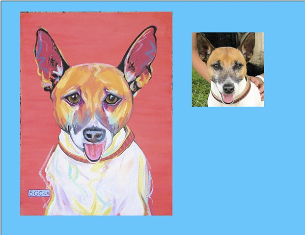 Hose Russell is a Jack Russell - Chihuahua  This is his Color Dog portrait