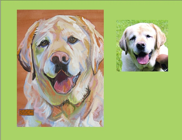 Jake is a Yellow Lab This is his Color Dog portrait