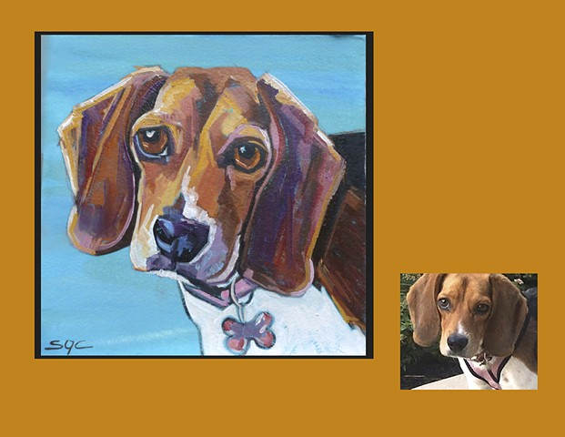 Color Dog portrait, pet portrait, dog portrait, custom oil dog portrait of a Beagle, painting of a Beagle, Color Dog portrait by Sarah Gayle Carter