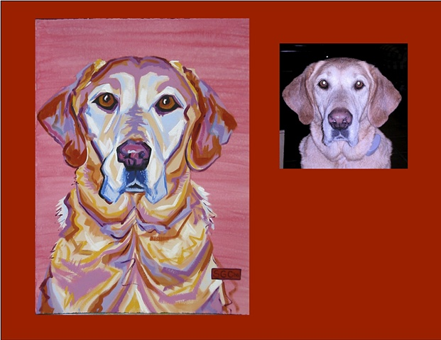 Buddy is a Yellow Lab  This is his Color Dog portrait