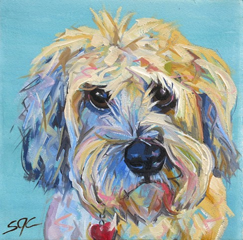Color Dog portrait, pet portrait, dog portrait, custom oil dog portrait, portrait of a Soft Coated Wheaton Terrier, portrait of Wheaton, Color Dog portrait by Sarah Gayle Carter