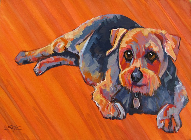 Color Dog portrait, pet portrait, dog portrait, custom oil dog portrait, portrait of a Norfolk terrier, portrait of a