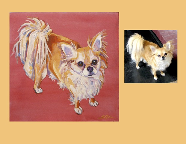 Color Dog portrait, pet portrait, dog portrait, custom oil dog portrait of a long haired Chihuahua, painting of a long haired Chihuahua, portrait of an  long haired Chihuahua, Color Dog portrait by Sarah Gayle Carter