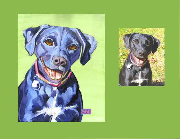 dog portrait, custom dog portrait, portrait of a black lab, painting of a black lab, Color Dog portrait, dog portrait by Sarah Gayle Carter