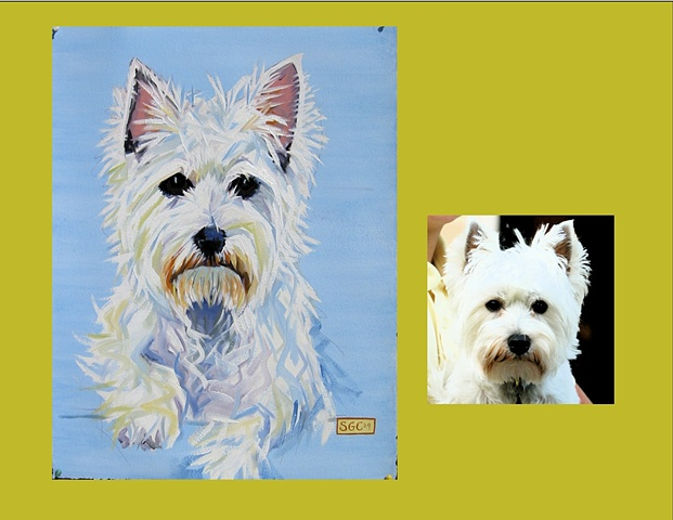 Texie is a West Highland Terrier  This is his Color Dog portrait