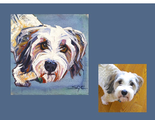 Color Dog portrait, pet portrait, dog portrait, custom oil dog portrait, painting of a Havanese, Color Dog portrait by Sarah Gayle Carter