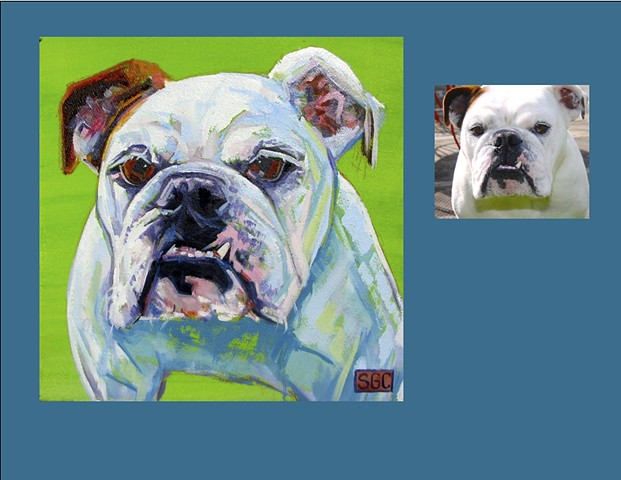 Color Dog portrait, pet portrait, dog portrait, custom oil dog portrait, portrait of an English Bulldog