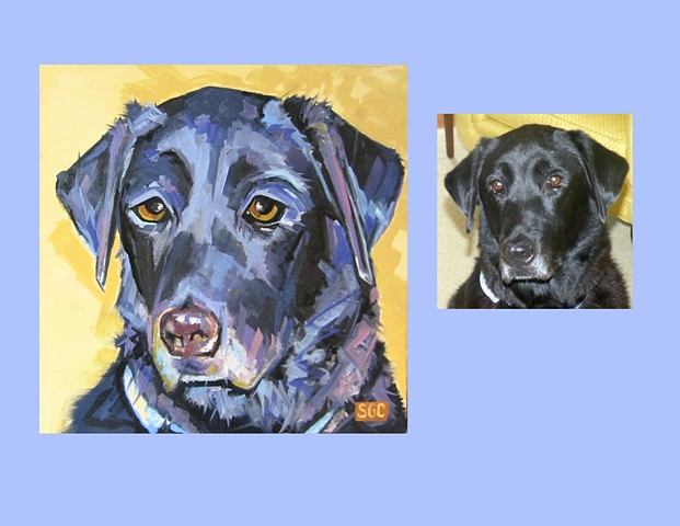 Color Dog portrait, pet portrait, dog portrait, custom oil dog portrait, portrait of a black Labrador Retriever, portrait of a Black Lab