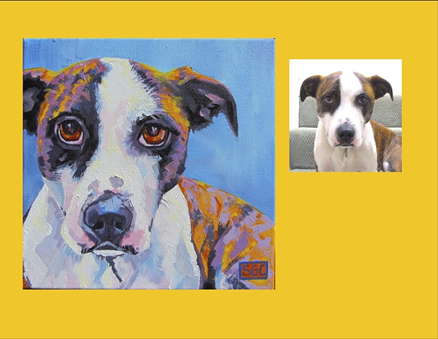 Color Dog portrait, pet portrait, dog portrait, custom oil dog portrait