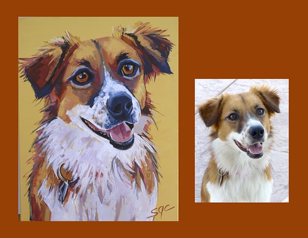 Color Dog portrait, pet portrait, dog portrait, custom oil dog portrait of an Australian Shepherd, painting of an Australian Shepherd, portrait of an Aussie, Color Dog portrait by Sarah Gayle Carter